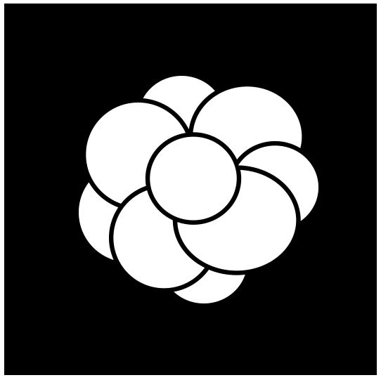 icons-kreis_0009_comperhensive